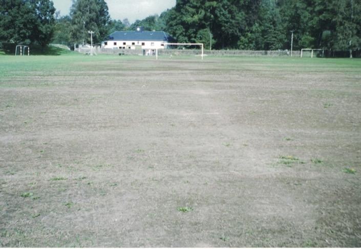 Hochwasser 2002 Sportplatz:1